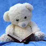 teddie bear reading